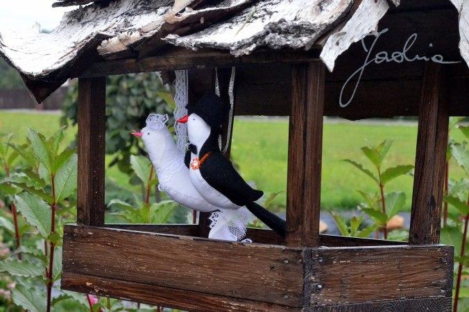 ptaszki w karmniku